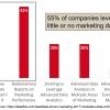 companies leverage little or no marketing data